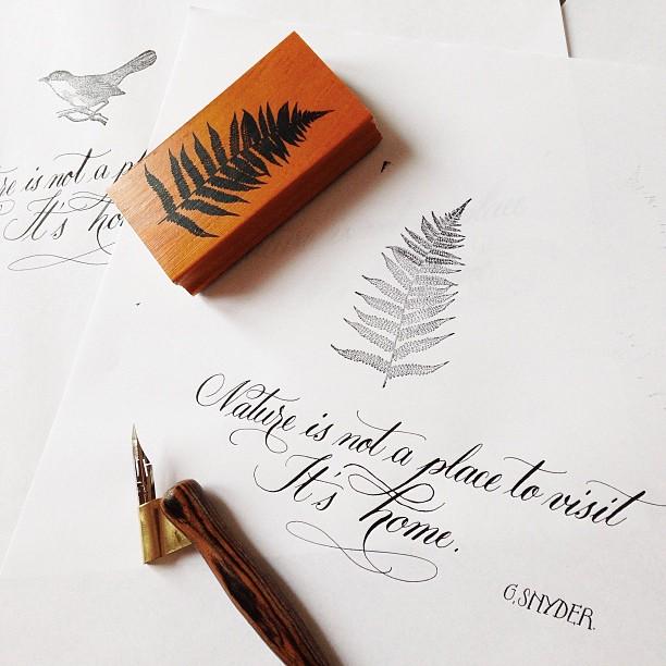 Calligraphique - Antescriptum