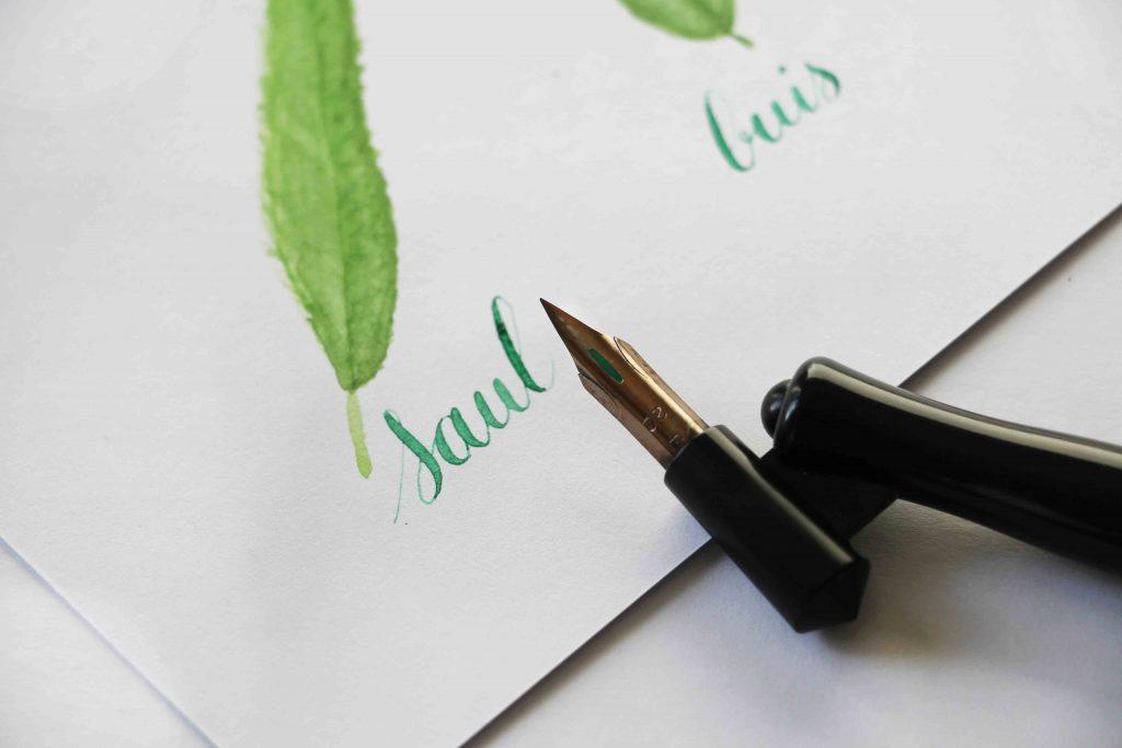 Calligraphique - herbier
