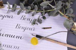 Cours vidéo calligraphie plume artesane